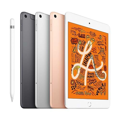 Apple - iPad mini 5